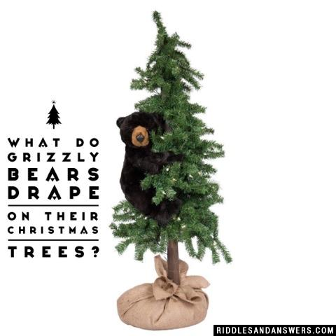 What do grizzly bears drape on their Christmas trees?