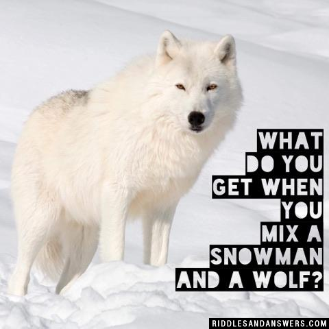 What do you get when you mix a snowman and a wolf?
