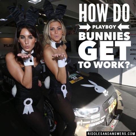 How do Playboy bunnies get to work?