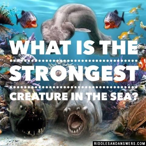 What is the strongest creature in the sea?