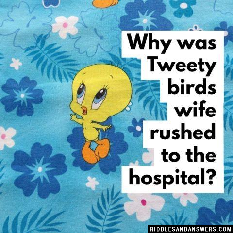 Why was Tweety birds wife rushed to the hospital?