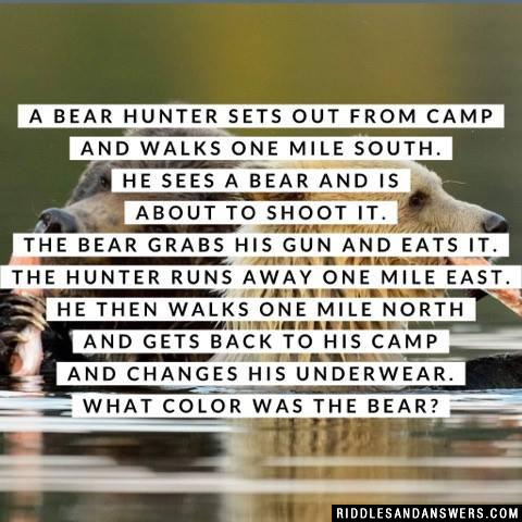 A bear hunter sets out from camp and walks one mile south.