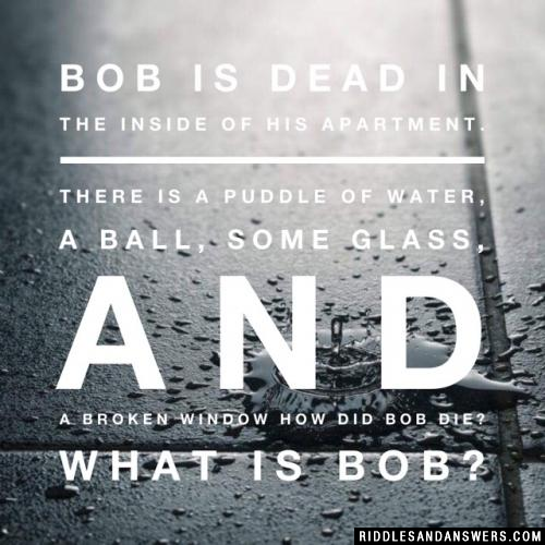 Bob is dead in the INSIDE of his apartment. There is a puddle of water, a ball, some glass, and a broken window How did Bob die? What is Bob?