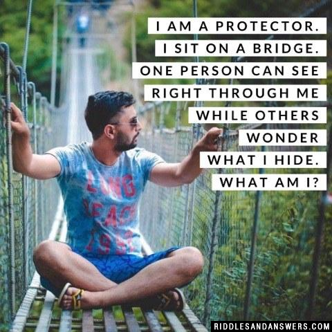 I am a protector. I sit on a bridge. One person can see right through me while others wonder what I hide. What am I?