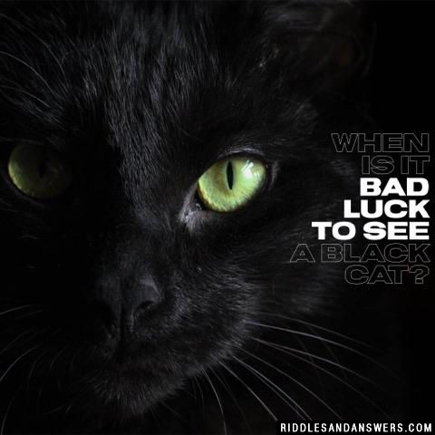 When is it bad luck to see a black cat?