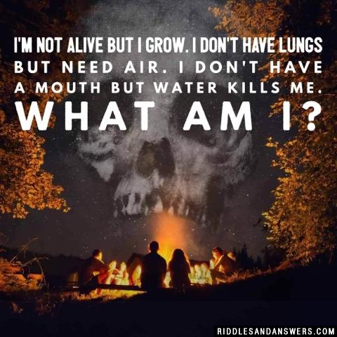 I'm not alive but I grow. I don't have lungs but need air. I don't have a mouth but water kills me. What am I?