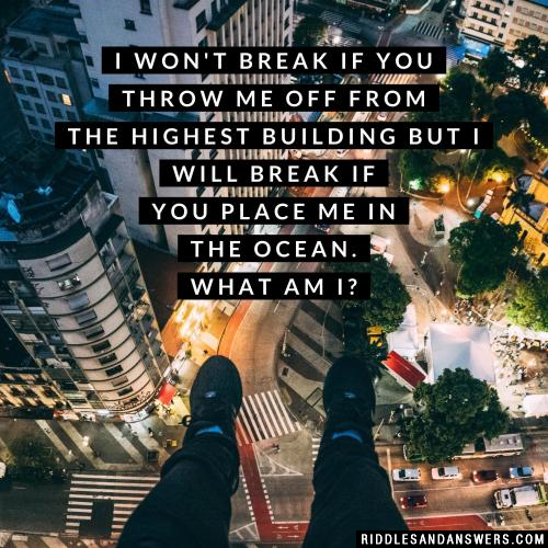 I won't break if you throw me off from the highest building but I will break if you place me in the ocean. What am I?
