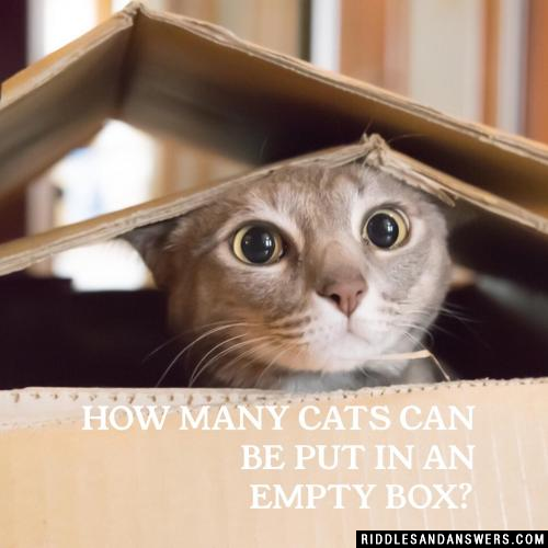 How many cats can be put in an empty box?