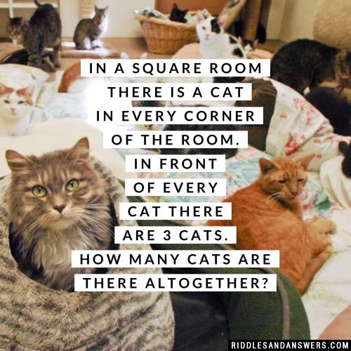In a square room there is a cat in every corner of the room. In front of every cat there are 3 cats. How many cats are there altogether?