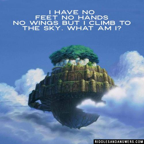 I have no feet no hands no wings but I climb to the sky. What am I?