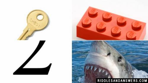 Can you solve the key lego 2 shark riddle?